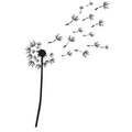 Dandelion  outline silhouette Stock Images