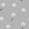 Dandelion seamless pattern on grey background Royalty Free Stock Photo