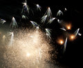 Dandelion shape of firework Royalty Free Stock Photo