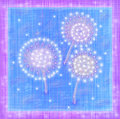 Dandelions the abstract background in a blue purple gamma with a few stylized Stock Photos