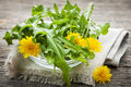 Dandelions greens and flowers foraged edible dandelion in bowl Stock Photos
