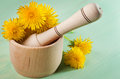 Dandelions in a wooden mortar with pestle on mint table Royalty Free Stock Images