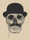 Dandy Skull Royalty Free Stock Photo