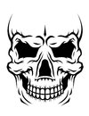 Danger human skull Royalty Free Stock Image