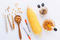 stock image of  Dangerous food from laboratory agricultural grains and corn wit