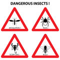Dangerous insects warning signs: ticks, mosquitoes, bees, scorpions.