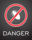 Dangerous Lice Insects Royalty Free Stock Photo