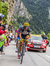 Daniele bennati climbing alpe d huez france july the italian cyclist from saxo tinkoff team the difficult road to Royalty Free Stock Photos