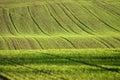 Danish landscape Royalty Free Stock Photo