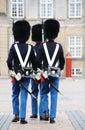 Danish Royal Guard Stock Photos