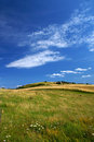 Danish summer landscape 1 Royalty Free Stock Photo