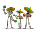 Danse macabre mexican musicians three skeletons with instruments play musics Royalty Free Stock Image