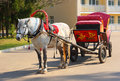 Dappled horse in red gear with a russian tradition Royalty Free Stock Photo