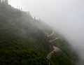 Darjeeling tea gardens from rope way a beautiful view of and road covered under mist a photo taken Royalty Free Stock Photography