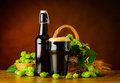 Dark Beer Pint with Green Hops Royalty Free Stock Photo