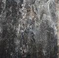 Dark  blur background, dry seaweed Dashi Kombu Royalty Free Stock Photo