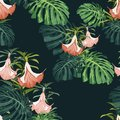 Dark and bright tropical leaves with jungle plants. Seamless vector tropical pattern with green palm and monstera leaves.