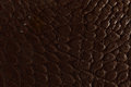 Dark brown leather texture Royalty Free Stock Photography