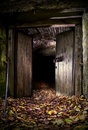 Dark cave entrance Royalty Free Stock Images