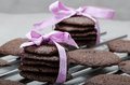 Dark chocolate biscuits homemade percent Stock Images
