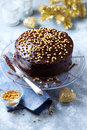 Dark chocolate cake with chocolate glaze for christmas on a stand Stock Photography