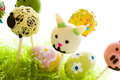 Dark chocolate easter cake pops decorates faces different animals Royalty Free Stock Images