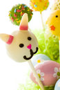 Dark chocolate easter cake pops decorates faces different animals Royalty Free Stock Photo