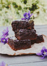 Dark Chocolate Guinness Brownies