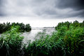 Dark clouds on lake with green canes and trees Royalty Free Stock Photo