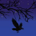 Dark crow bird flying over scary halloween night tree vector illustration background Stock Images