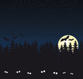 Dark forest full moon bats fear dark Royalty Free Stock Image