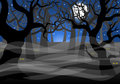 Dark ghostly forest and full moon vector illustration of a Stock Photo
