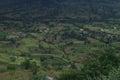 Dark green landscape of Indian Village Satara Royalty Free Stock Photo