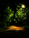 Dark park alley Royalty Free Stock Photo