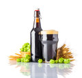 Dark Pint Beer with Hops and Wheat on White Background Royalty Free Stock Photo