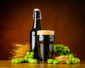 Dark Pint Beer with Wheat And Hop Flower Royalty Free Stock Photo