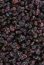 Dark Raisins Stock Photo