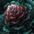 Dark Red And Green Fractal Flo...