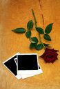 Dark red rose and old photos Royalty Free Stock Photos