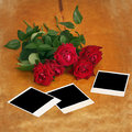 Dark red rose and old photos on wood Royalty Free Stock Image