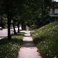 A sidewalk leading up to a silhouette of a person