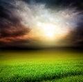 Dark sky green field of grass with sun light Royalty Free Stock Photo