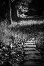 Dark stone path a film noire low angle shot of the edge of a Stock Photography