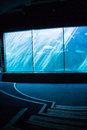 Darkest room with a fish tank at the aquarium Stock Photo