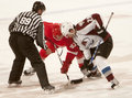 Darren helm faces off against ben guite Imagem de Stock