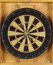 Dart Board Stock Image