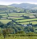 Dartmoor Royalty Free Stock Image