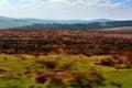 Dartmoor national park april in devon england Royalty Free Stock Image