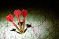 Darts in a dark roadmap Royalty Free Stock Photo
