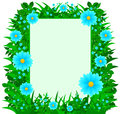 Dasiy Flowers Frame Royalty Free Stock Image
